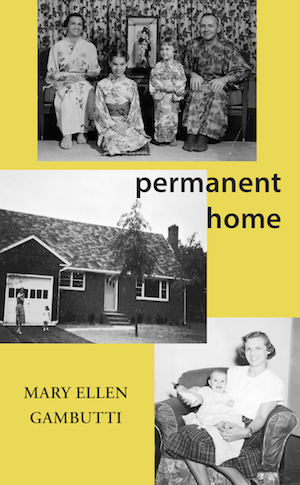 7-10 - Mary Ellen Gambutti book cover