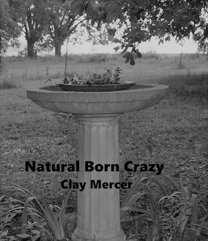 7-13 - Clay Mercer book cover 2