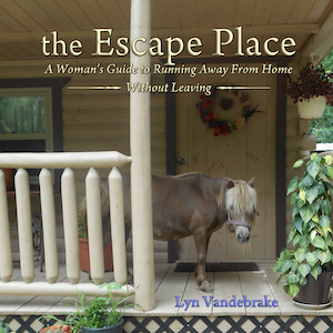7-5 - Lyn Vandebrake book cover